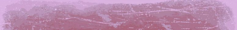cropped-rosa-pizarra1.jpg